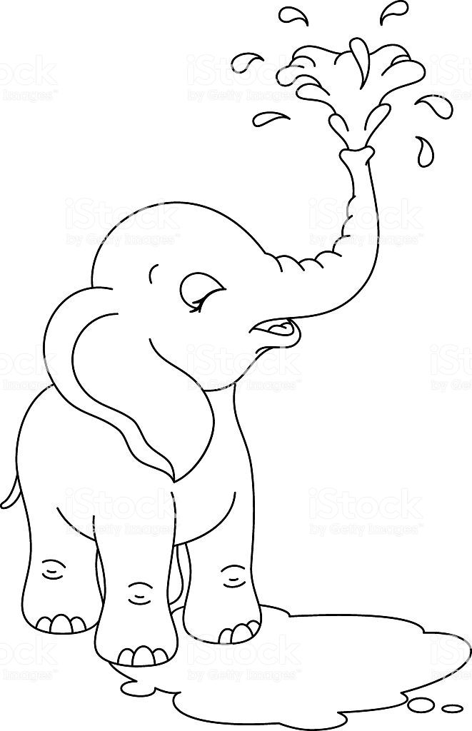 elephant outline coloring page elephant pictures to trace clipart best page elephant coloring outline