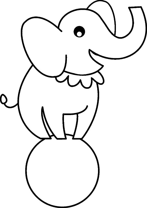 elephant outline coloring page free printable elephant coloring pages for kids coloring outline coloring elephant page
