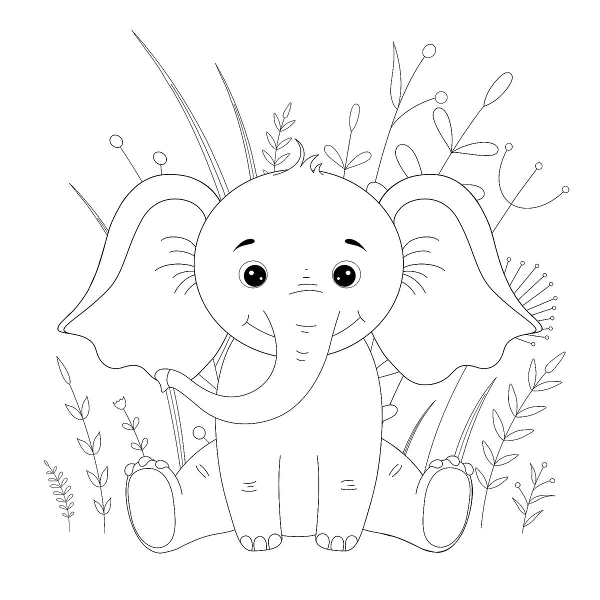elephant picture for coloring activity shelter picture elephant coloring for