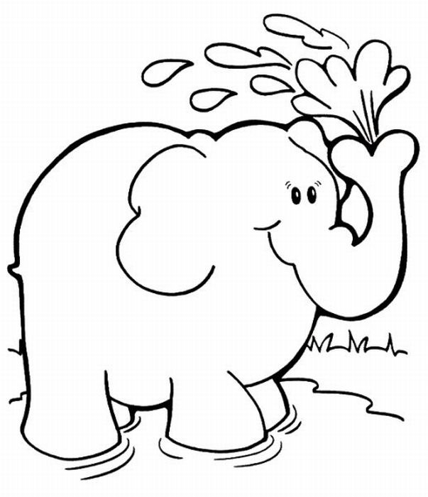 elephant picture for coloring free printable elephant coloring pages for kids coloring picture for elephant