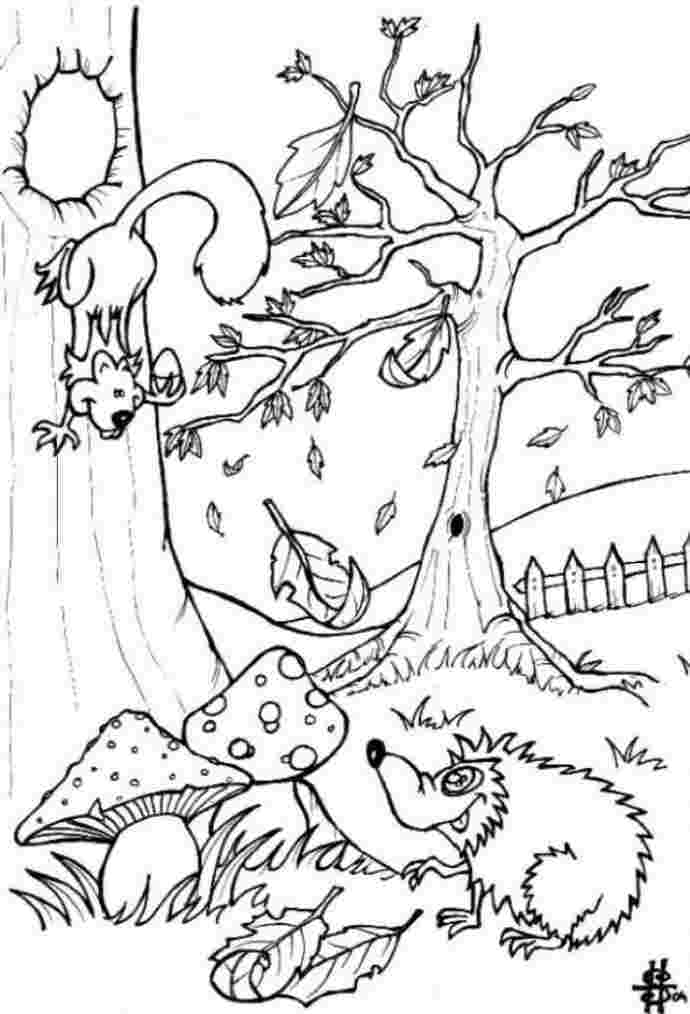 endangered species coloring pages chicago wolves coloring species animal coloring pages endangered coloring pages species