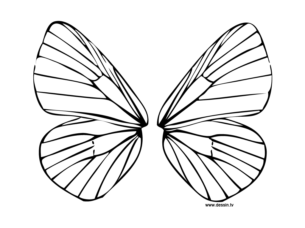 fairy wings coloring decorate the fairy wings coloring page coloring pages 4 u fairy wings coloring