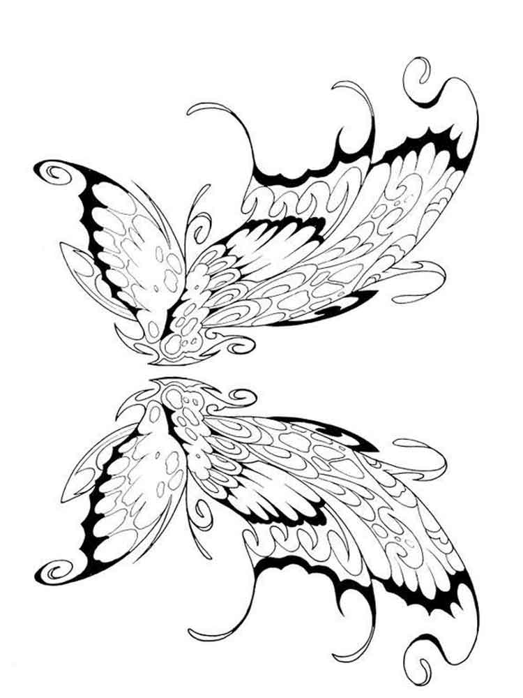 Fairy wings coloring