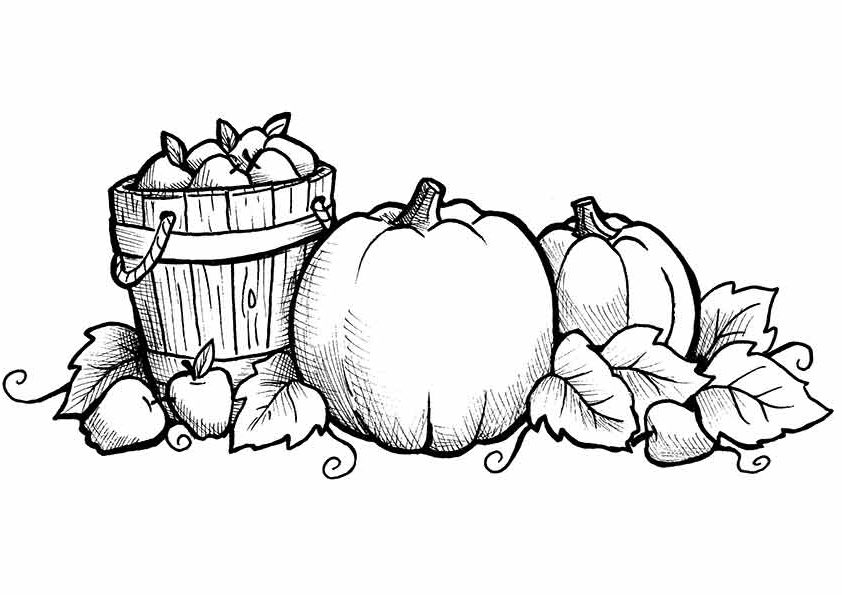 fall color sheet fall coloring pages 2018 dr odd sheet color fall