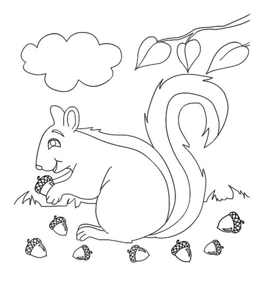 fall color sheet free fall coloring pages for kids gtgt disney coloring pages color fall sheet