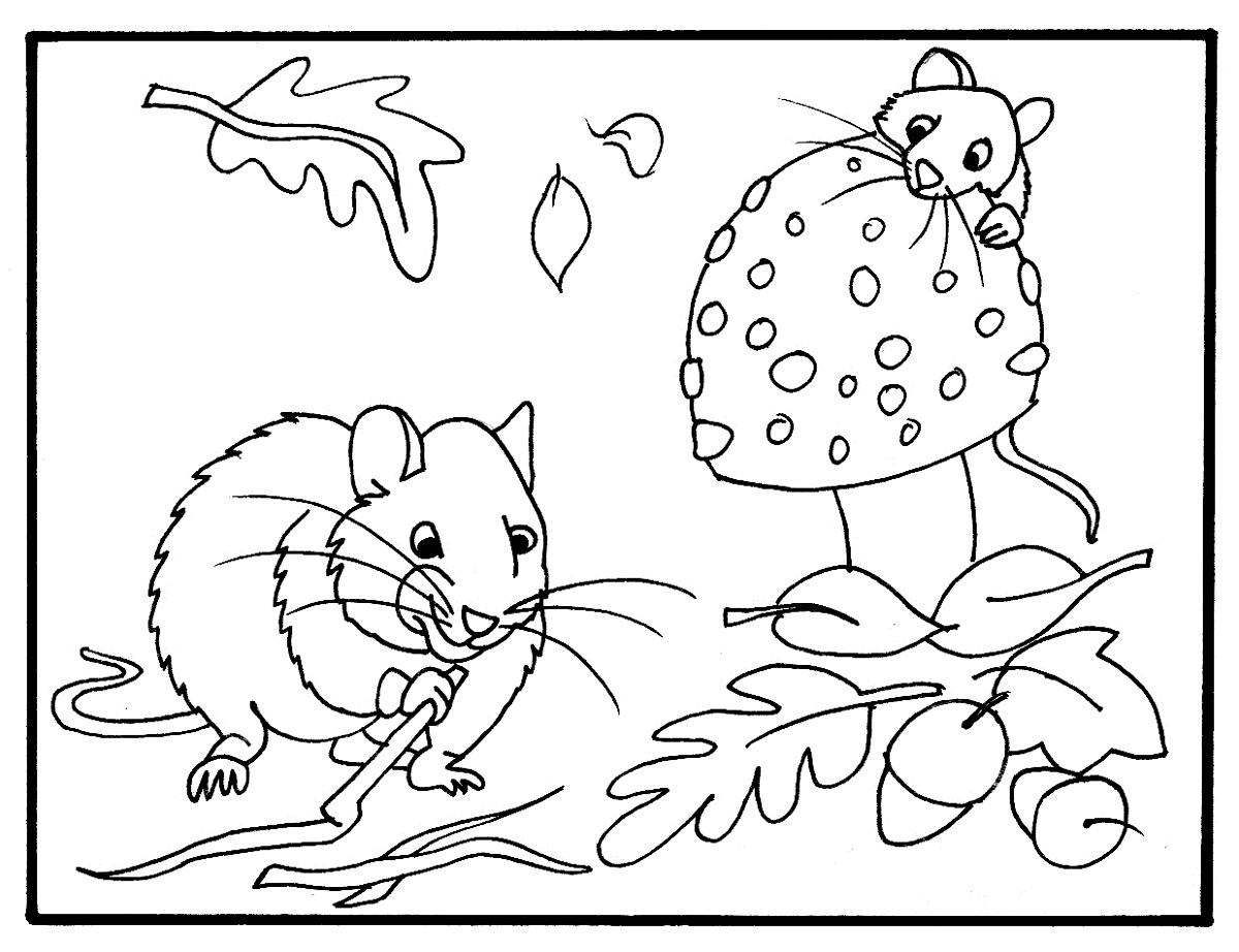 fall color sheet free printable fall coloring pages for kids best color sheet fall