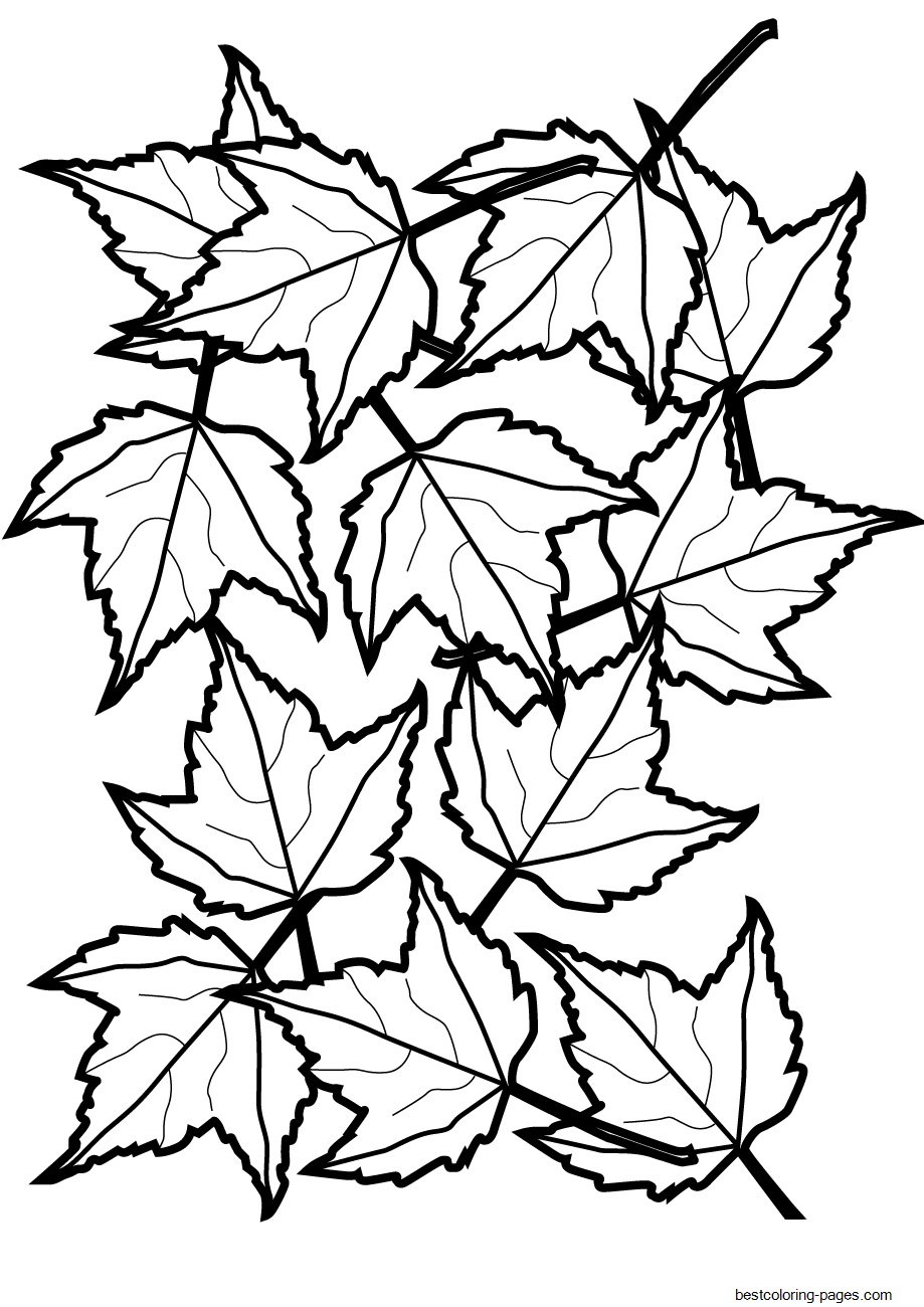fall leaves coloring sheets a lot of maple fall leaf coloring page kids play color coloring fall leaves sheets