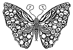fancy butterfly coloring pages butterfly coloring pages coloring pages fancy butterfly