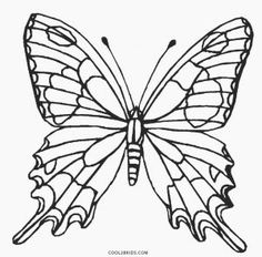fancy butterfly coloring pages fancy butterfly pages coloring pages coloring pages butterfly fancy