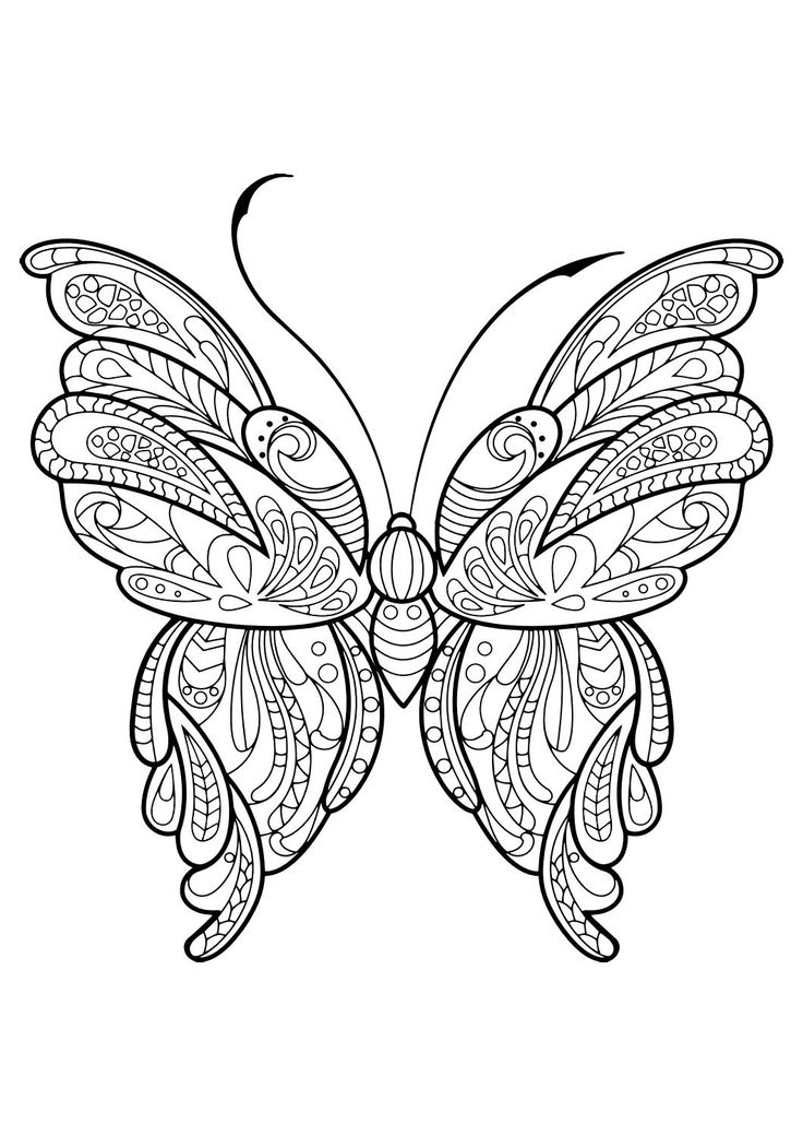 fancy butterfly coloring pages fancy butterfly pages coloring pages pages coloring fancy butterfly