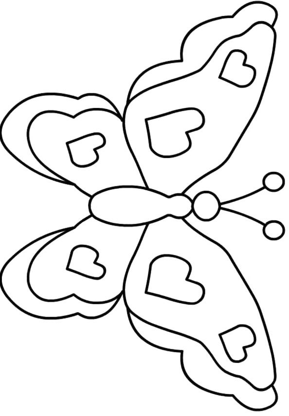 fancy butterfly coloring pages outline of butterfly free download on clipartmag fancy coloring butterfly pages