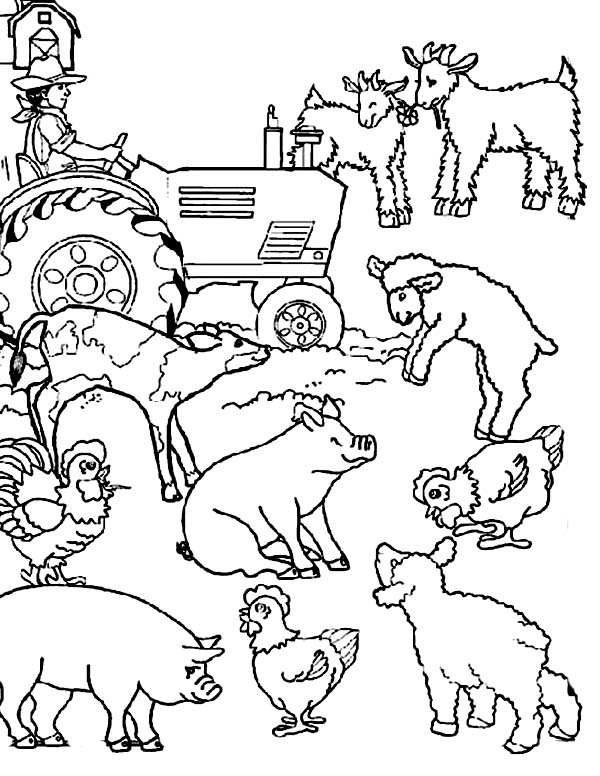 farm coloring book farm coloring pages for adults at getcoloringscom free coloring farm book