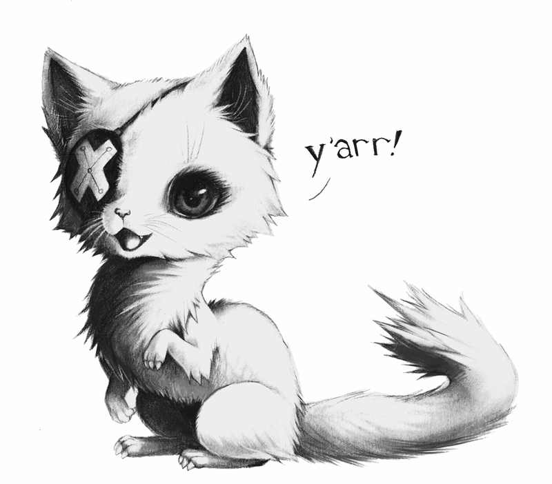 ferret drawings how to draw a ferret youtube ferret drawings