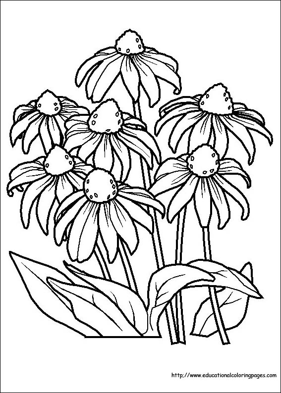 floral coloring pages flowers in a circle coloring pages sheets coloring pages pages floral coloring