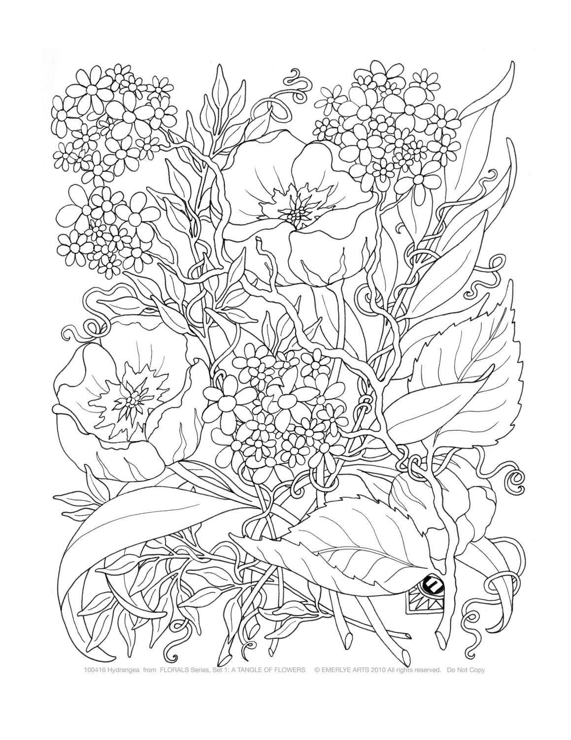 flower coloring pages adults get this detailed flower coloring pages for adults pages flower adults coloring