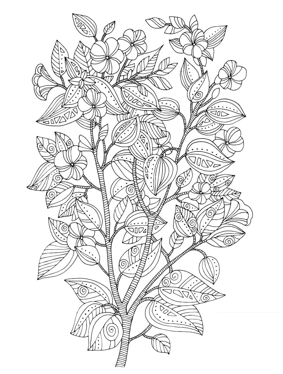 flower doodle coloring pages flower coloring pages pages doodle coloring flower