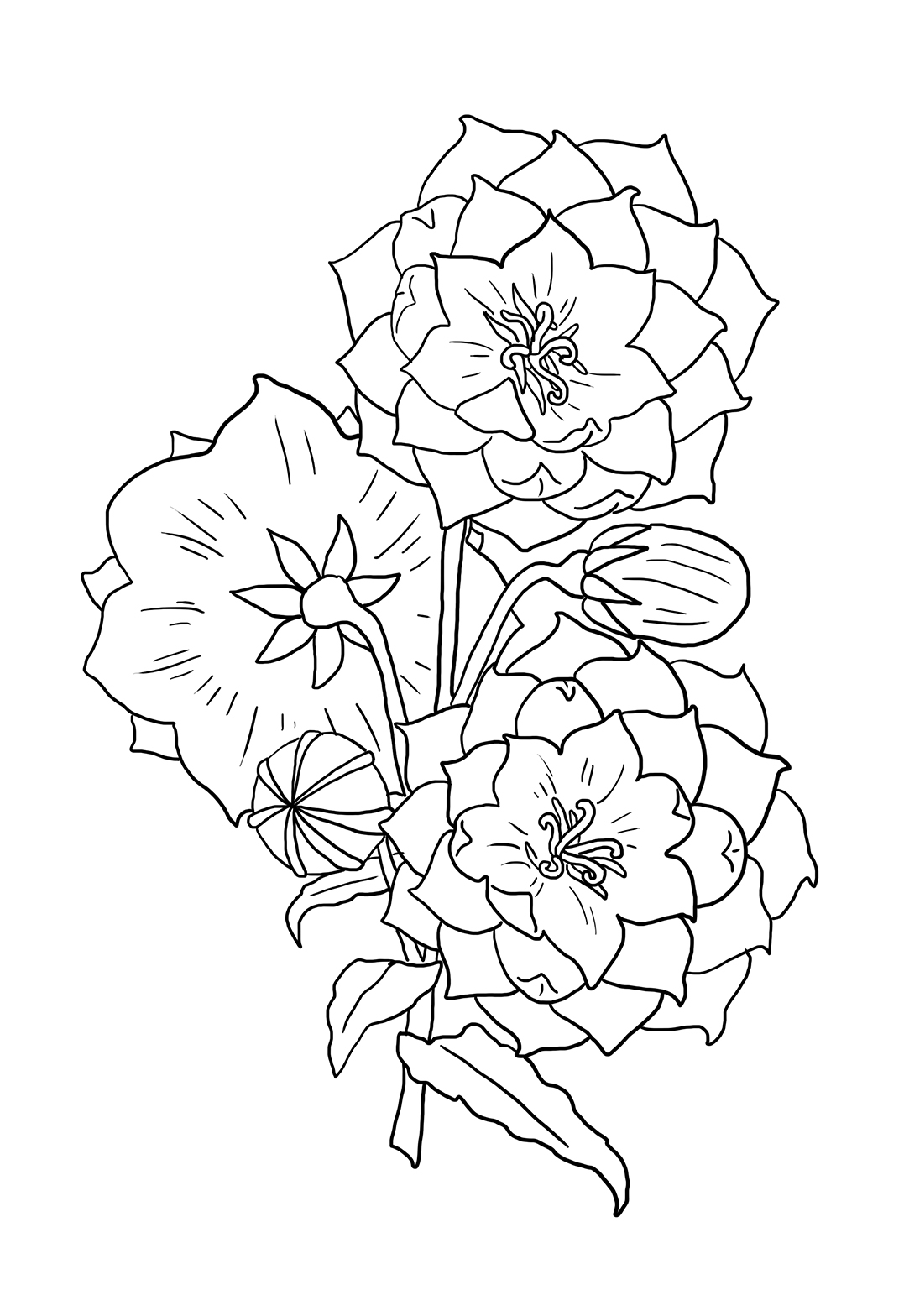 flower doodle coloring pages free printable floral coloring page ausmalbild freebie coloring flower pages doodle