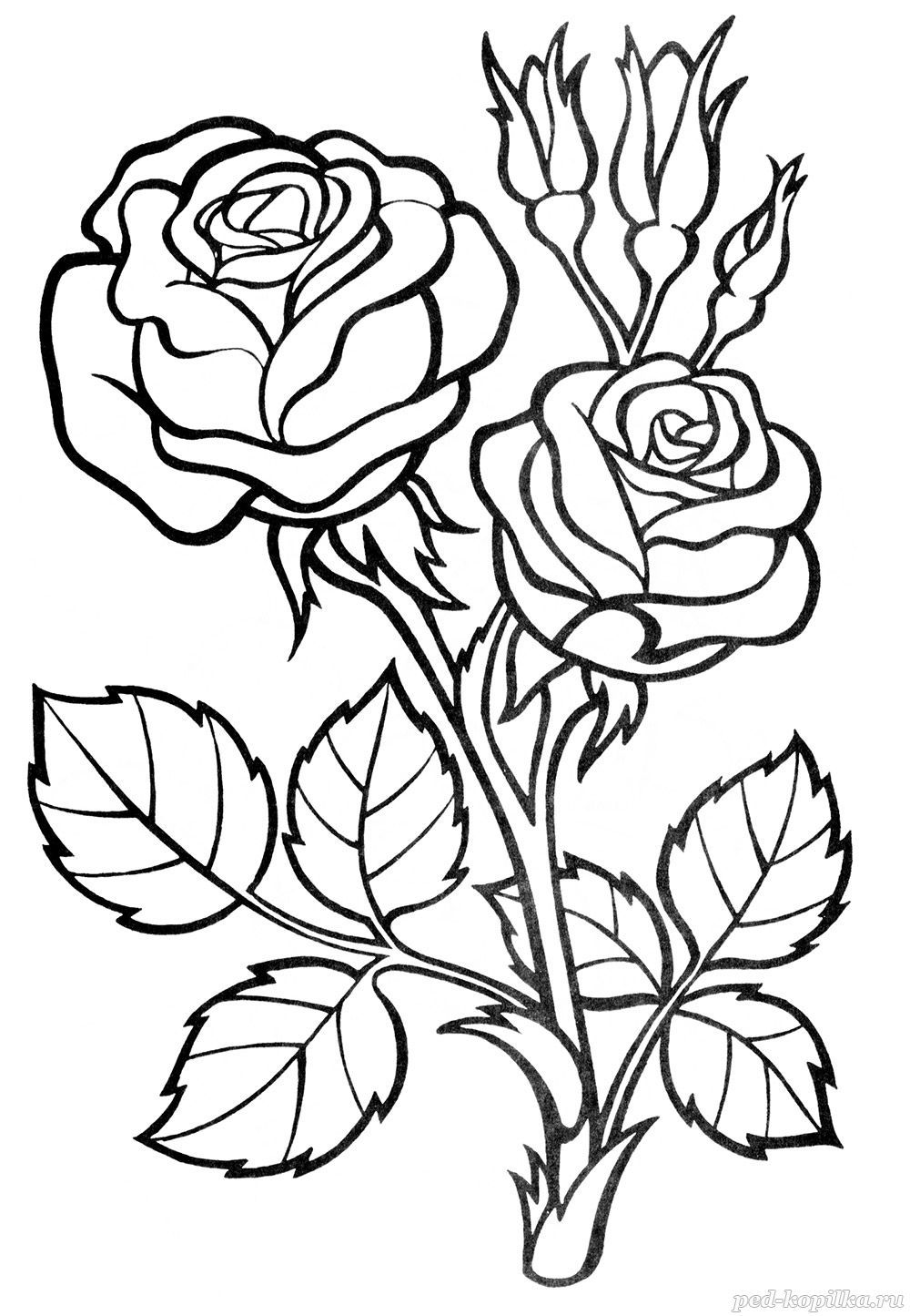 flower doodle coloring pages rose flower colouring pages for kids kids colouring flower coloring doodle pages