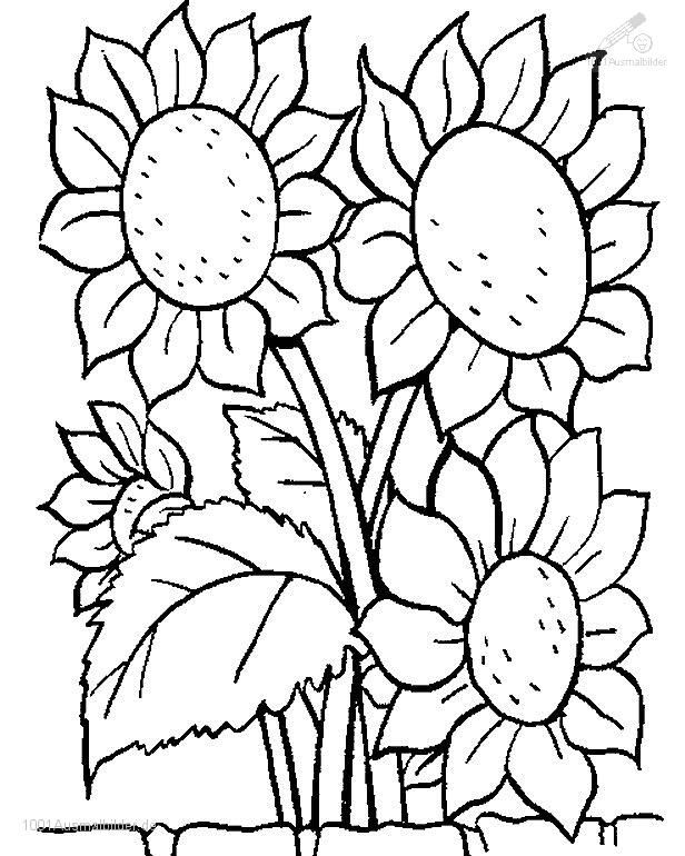 flower mosaic coloring pages free printable mosaic coloring pages coloring pages kids coloring pages mosaic flower