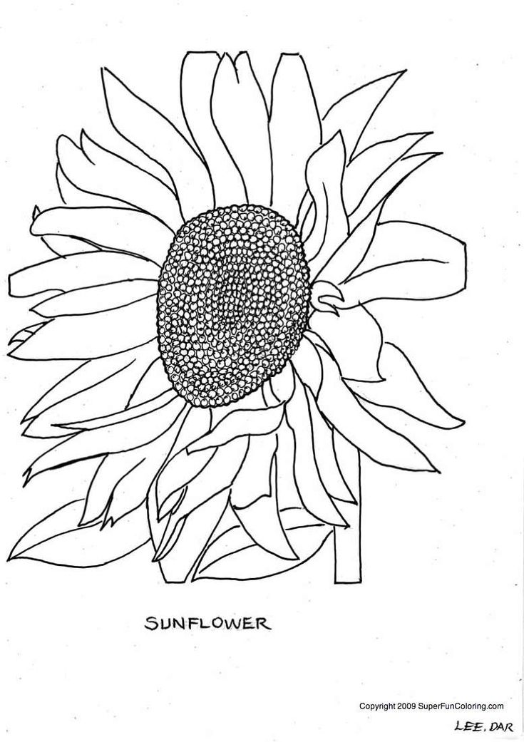 flower mosaic coloring pages mosaic church window mosaic coloring page pattern flower mosaic pages coloring