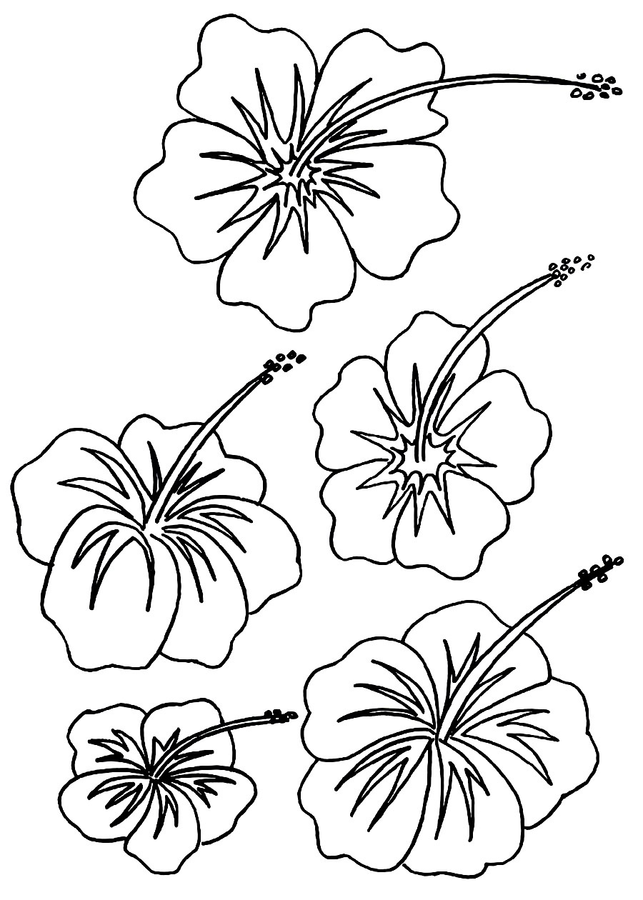 flower pictures coloring pages beautiful printable flowers coloring pages flower pages coloring pictures
