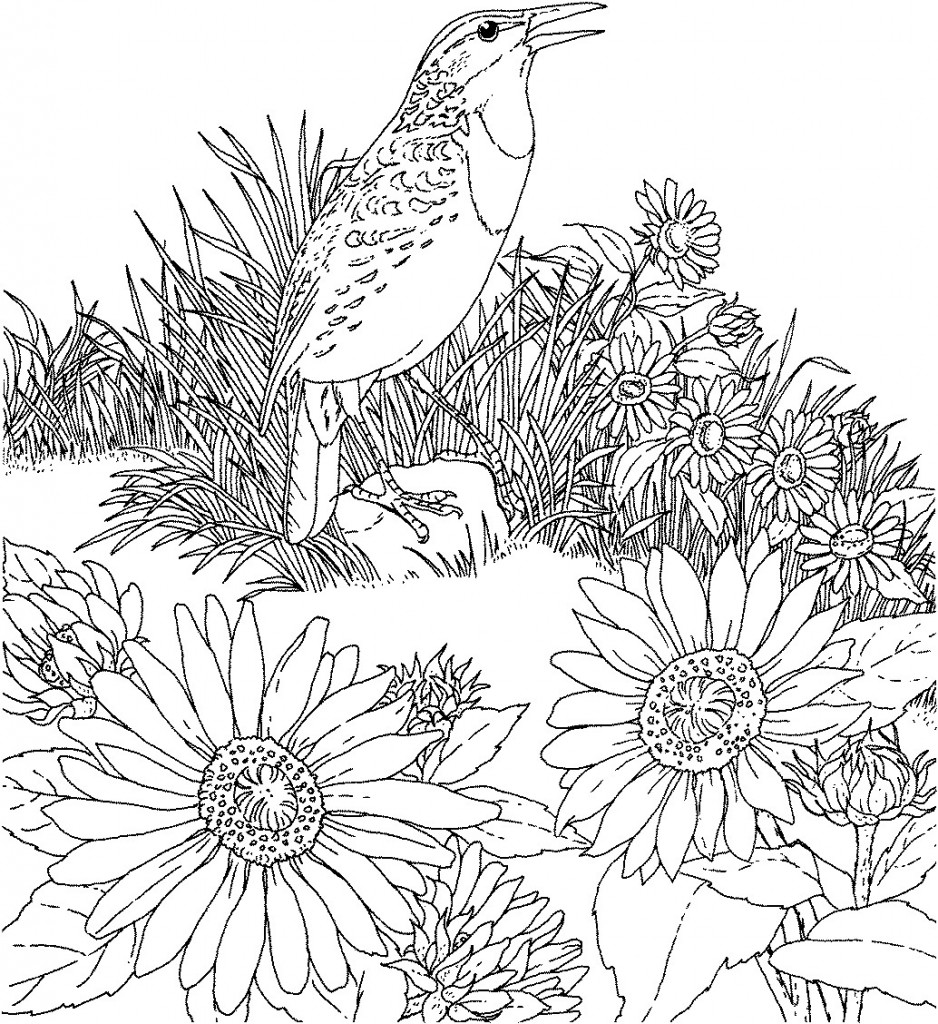 flower pictures coloring pages bouquet of flowers coloring pages for childrens printable pages flower pictures coloring