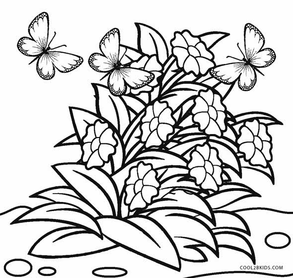 flower pictures coloring pages flower coloring pages for adults best coloring pages for flower coloring pages pictures
