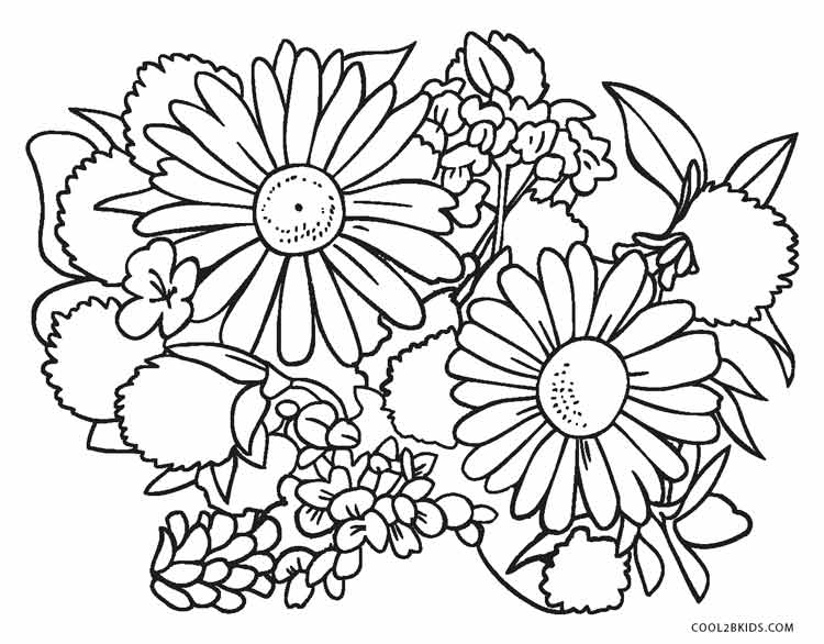 flower pictures coloring pages free printable flower coloring pages for kids cool2bkids flower coloring pictures pages