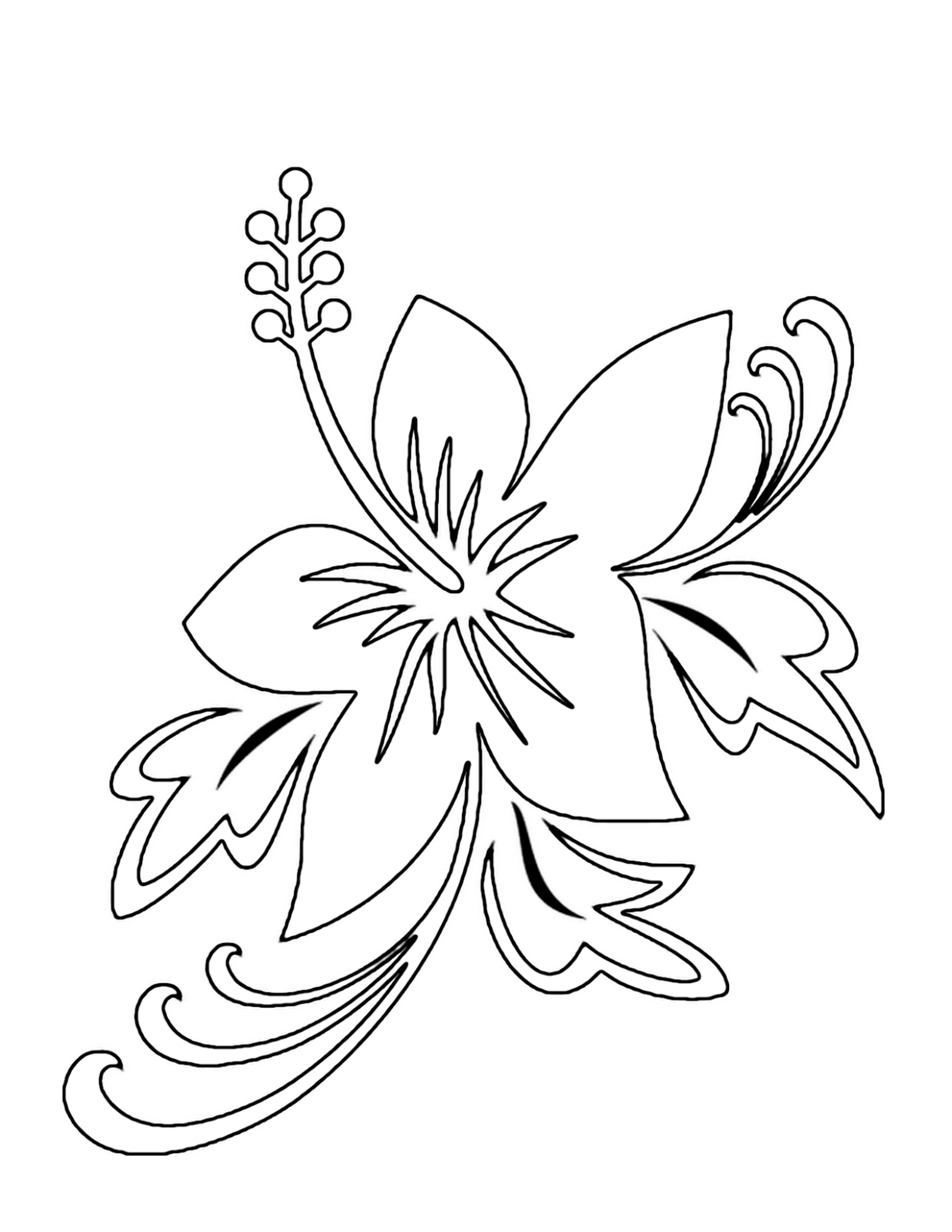flower pictures coloring pages free printable hibiscus coloring pages for kids pictures flower pages coloring