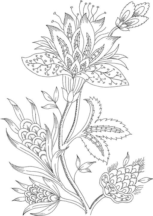 flower pictures coloring pages traceable flowers clipartsco pages flower pictures coloring