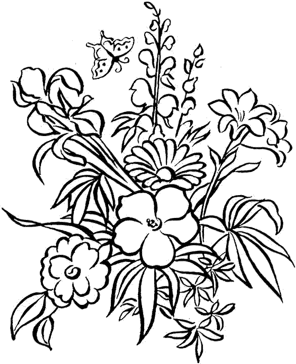 flower printables free printable flower coloring pages for kids cool2bkids flower printables