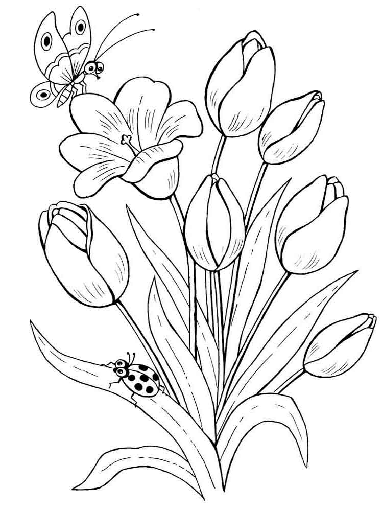 flowers color pages tulip coloring pages download and print tulip coloring pages pages flowers color