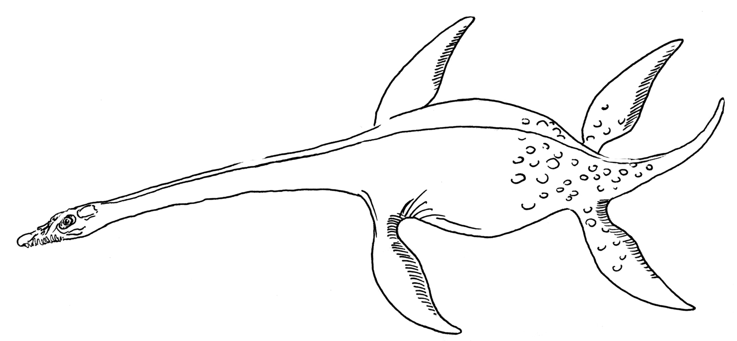 flying dinosaur coloring pages plesiosaurus coloring pages dinosaurs pictures and facts dinosaur pages coloring flying