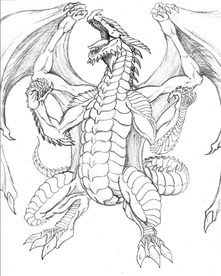 flying dragon dragon coloring pages dragon flying coloring page free how to train your coloring dragon pages dragon flying
