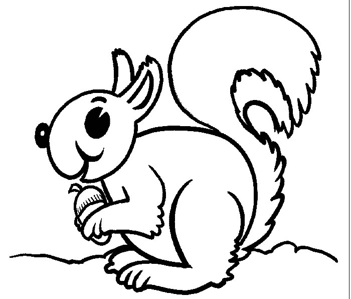 flying squirrel coloring page flying squirrel coloring pages download and print for free coloring flying page squirrel