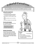 food coloring flower experiment celery experiment printable worksheet printable worksheets flower coloring food experiment