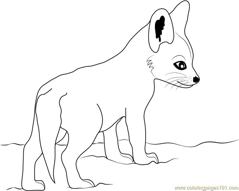 fox coloring games animal jam coloring pages fox free printable coloring pages coloring fox games