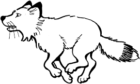 fox coloring games fox in mask coloring play free coloring game online fox coloring games