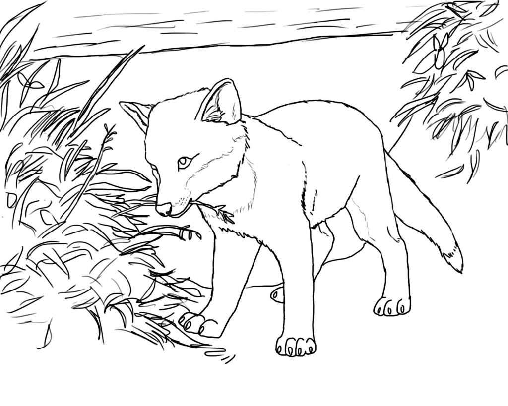 fox coloring games free printable fox coloring pages for kids coloring games fox 1 1