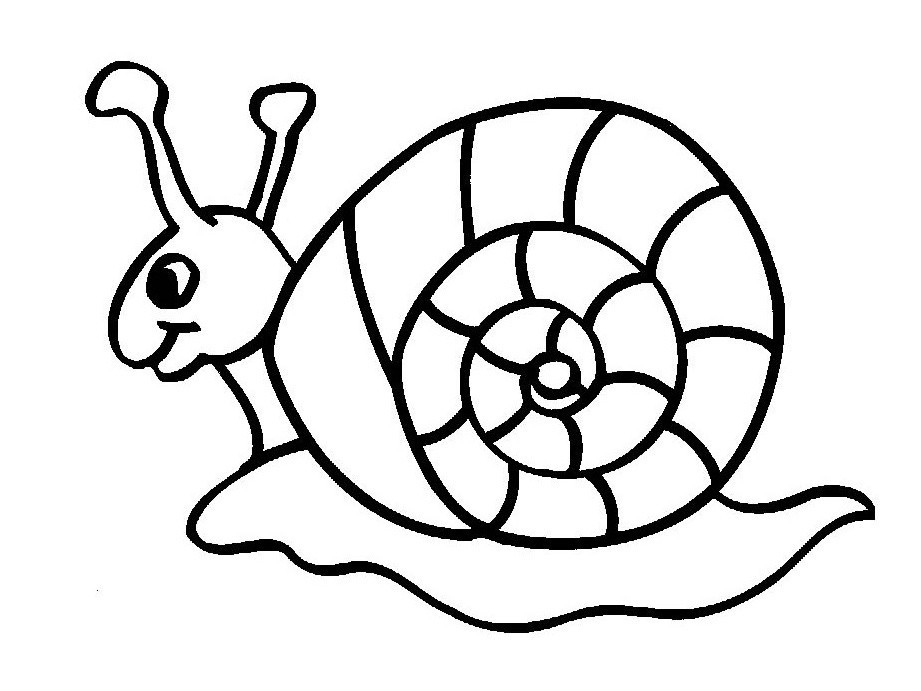 free animal coloring pages for kids free coloring pages for kids zoo animals google search for animal coloring free kids pages