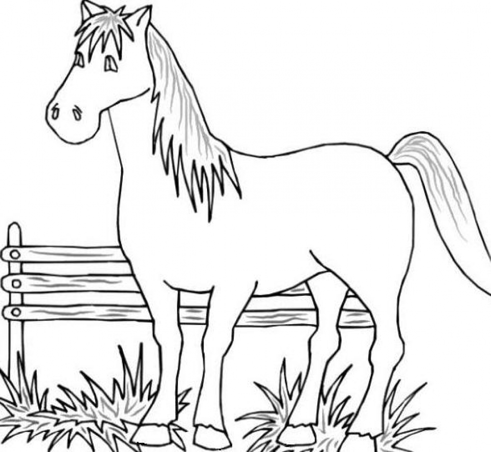 free animal coloring pages for kids free printable cow coloring pages for kids animal place free for animal coloring kids pages