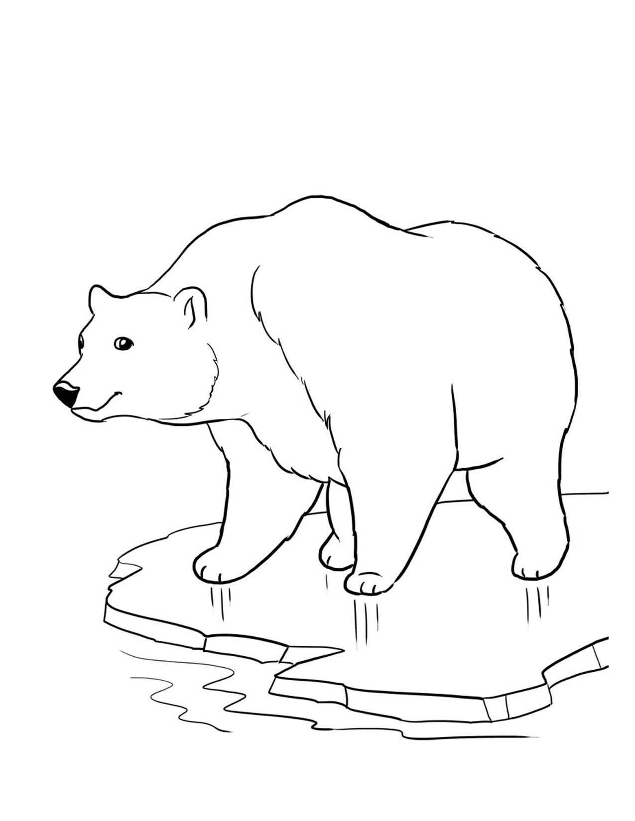 free coloring pages bears free printable bear coloring pages for kids pages coloring bears free