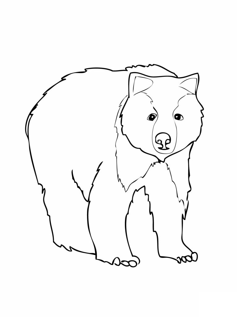 free coloring pages bears free printable teddy bear coloring pages for kids pages free bears coloring