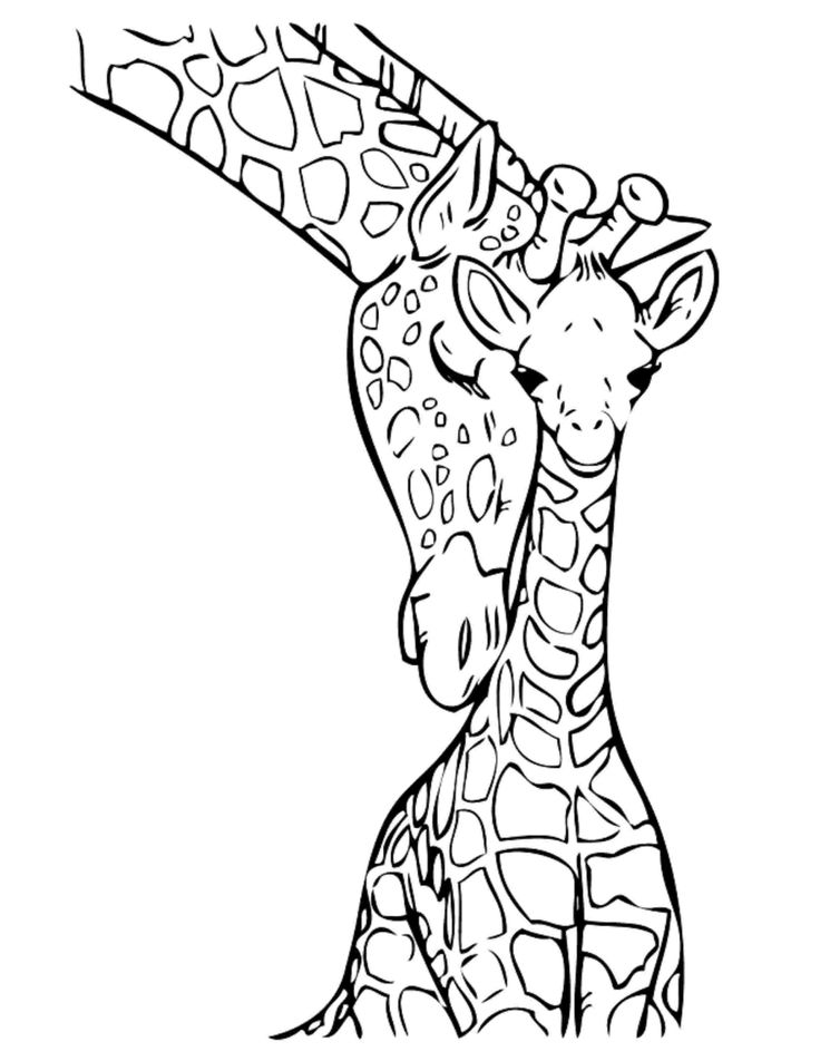 free printable coloring pages animals cuties coloring pages for kids free preschool printables animals coloring pages printable free