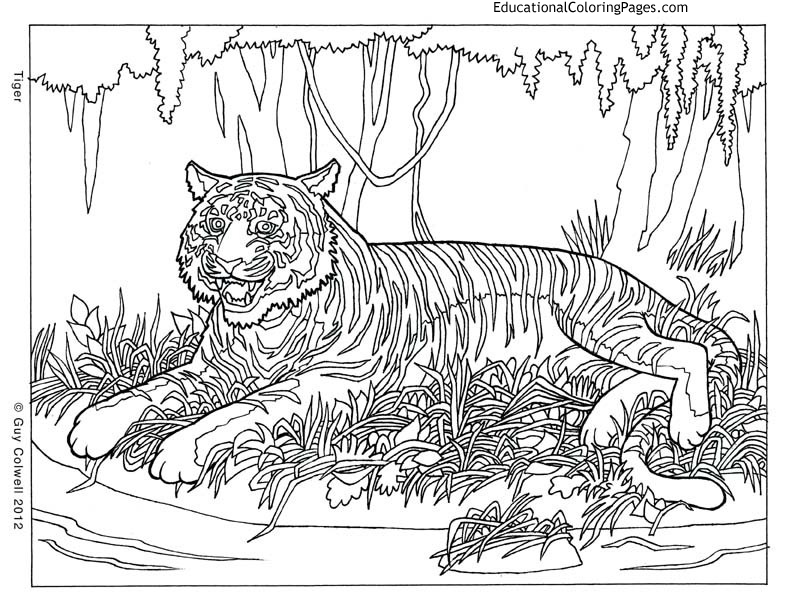 free printable coloring pages animals pattern animal coloring pages download and print for free printable animals pages free coloring