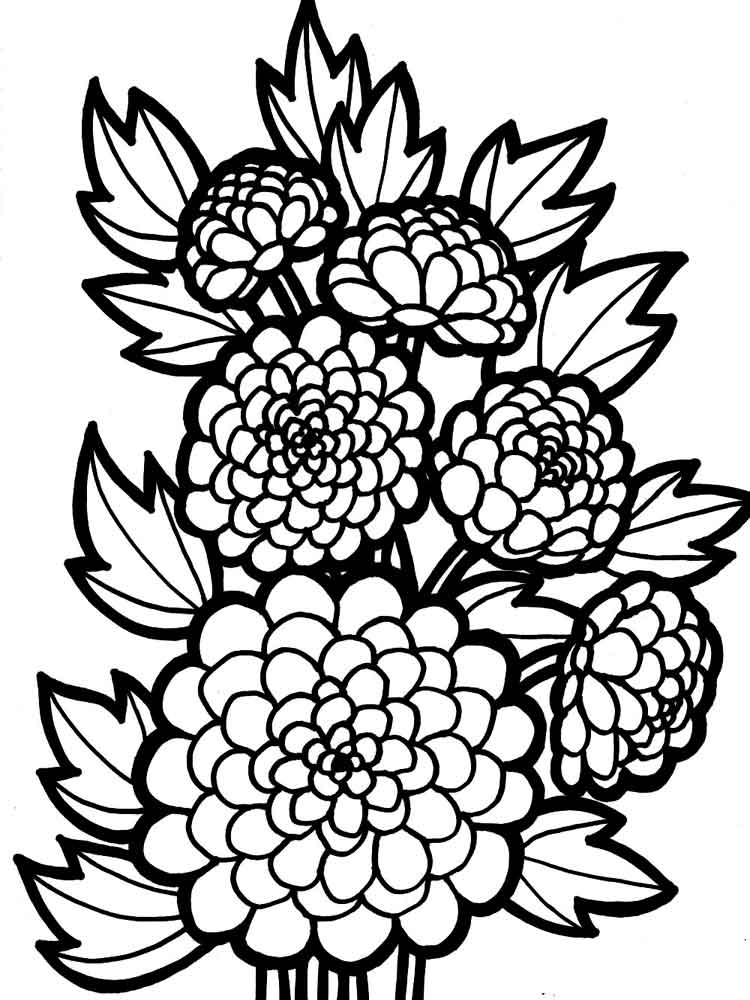 free printable coloring pages of flowers flower coloring pages coloringrocks flowers coloring printable free pages of