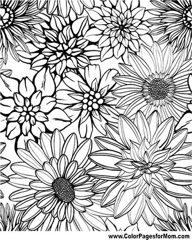 free printable coloring pages of flowers free printable coloring pages of flowers free pages printable flowers of coloring