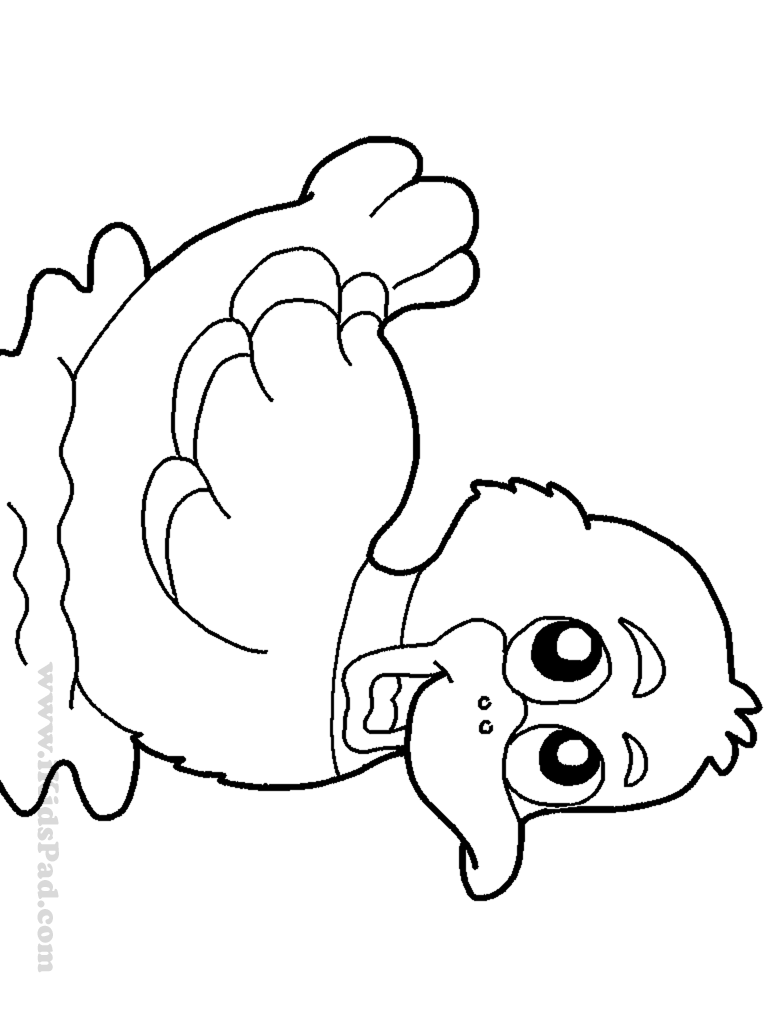 free printable duck coloring pages duck coloring pages for kids preschool and kindergarten coloring pages free duck printable