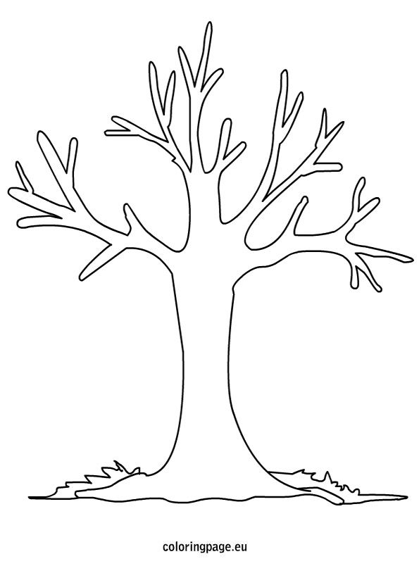 free printable fall tree coloring pages autumn tree coloring page free printable coloring pages printable pages coloring free tree fall