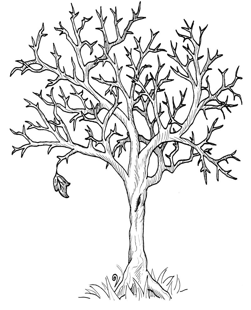 free printable fall tree coloring pages autumn tree coloring pages printable boyama sayfaları coloring free pages tree printable fall
